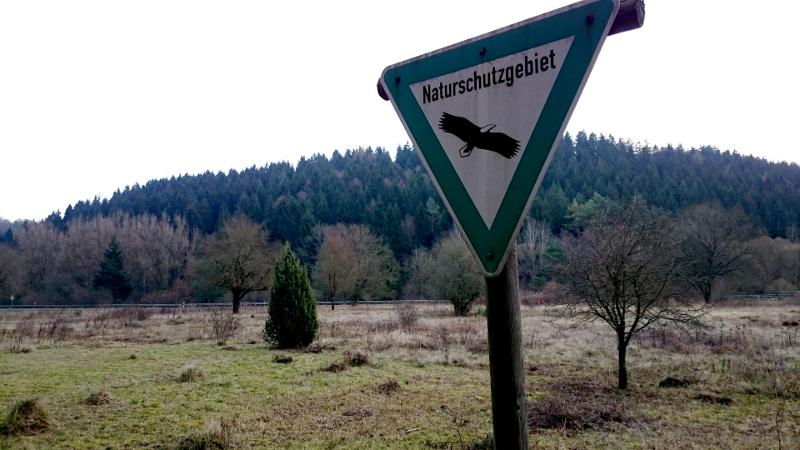 Wandeling: geocaching in Ahrdorf