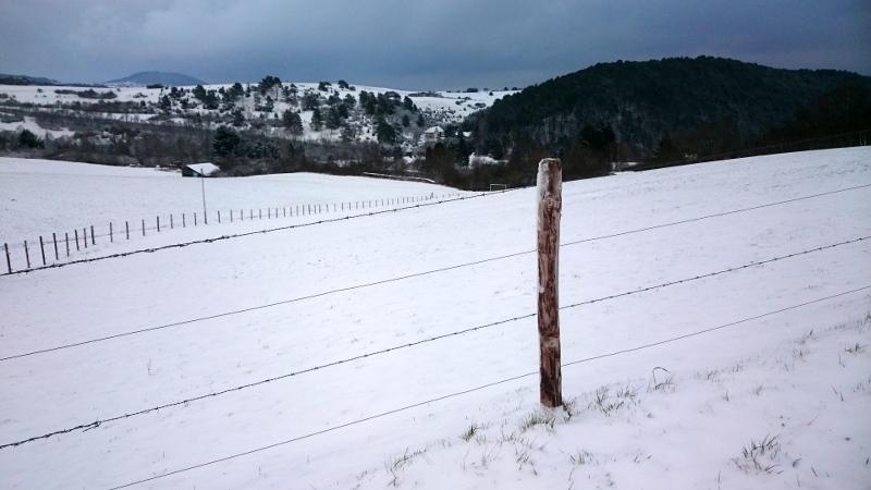 Sneeuw in de Eifel (winter 2015-2016)