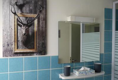6c badkamer4-liggebd-bewerkt-800px