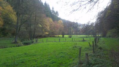 wandelen nabij Rohr