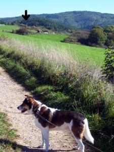 wandellandschap nabij huisje (bij pijl)